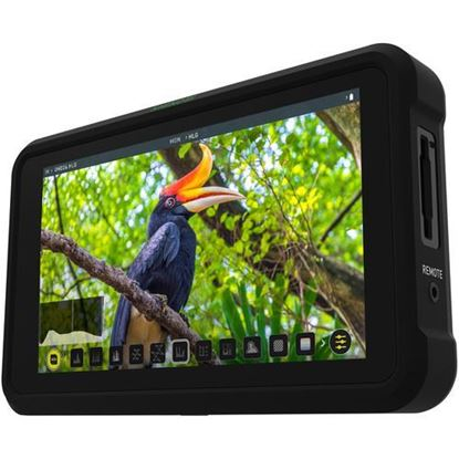 Picture of Atomos Shinobi 5'' HDR Photo & Video Monitor