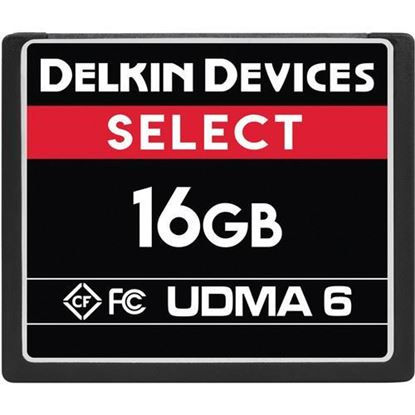 Picture of Delkin Devices 16GB Select UDMA 6 CompactFlash Memory Card